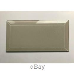 Abolos 3-in x 6-in Frosted Elegance Beige Glass Subway Wall Tile Case