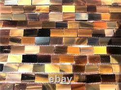 Walker Zanger Truffle Artisan Field Chelsea Art Glass 12 x 12 Tile